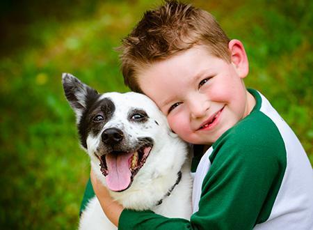accesso ai cani